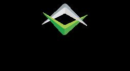 Mavasoft Network Logo